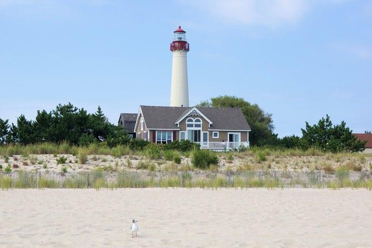 David Podrog Jersey Shore real estate
